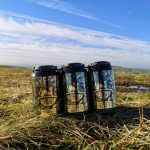 Forest Whisky, Ginger & Clementine Pre-mix cans - Pack of 12